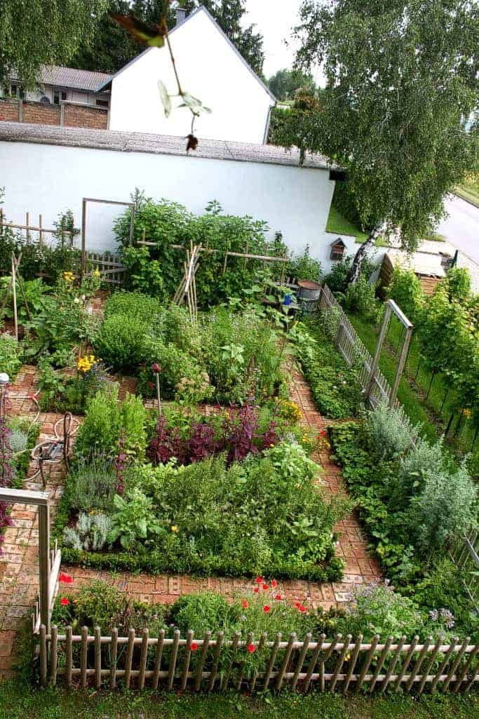 Nice Kitchen Garden in Austria - flowers-plants-planters
