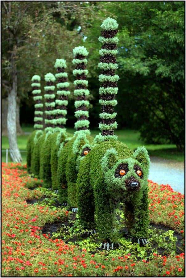Top 20 Sculptural Topiaries 4 - Garden Decor - 1001 Gardens
