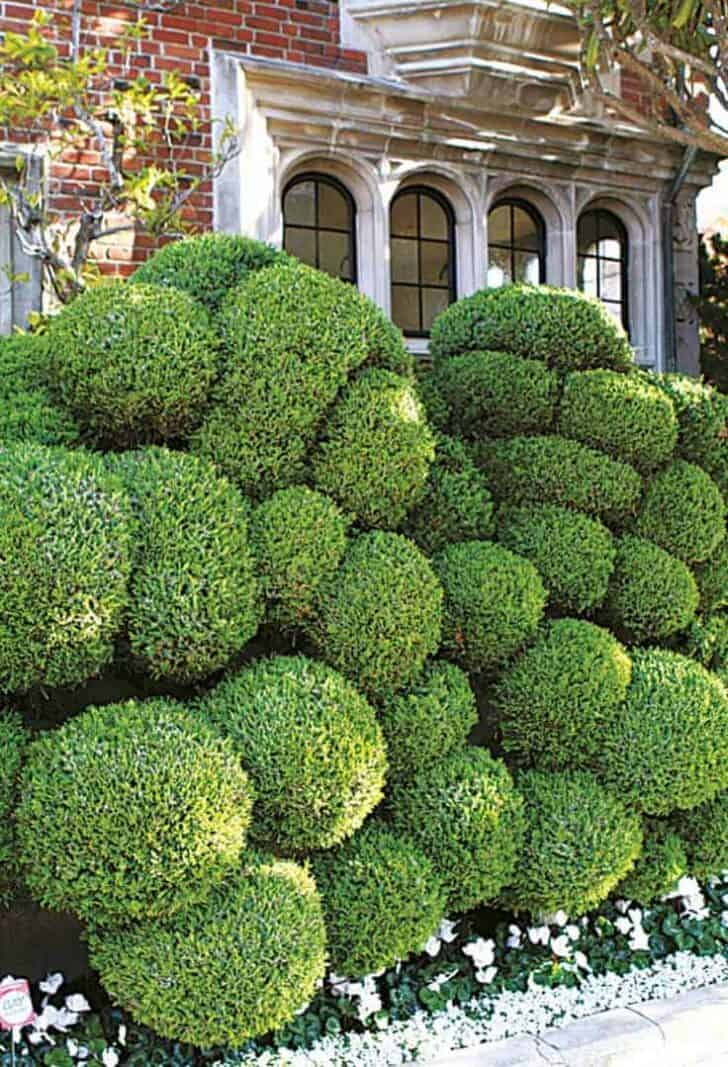 Top 20 Sculptural Topiaries 2 - Garden Decor - 1001 Gardens