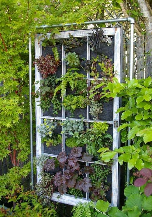 Hanging garden panel in vintage window frame, Portland, OR
