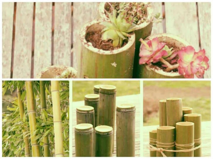 diy bamboo planters 1001 gardens. Black Bedroom Furniture Sets. Home Design Ideas