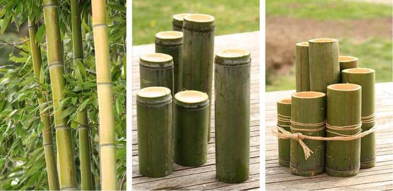 Diy Bamboo Planters - flowers-plants-planters