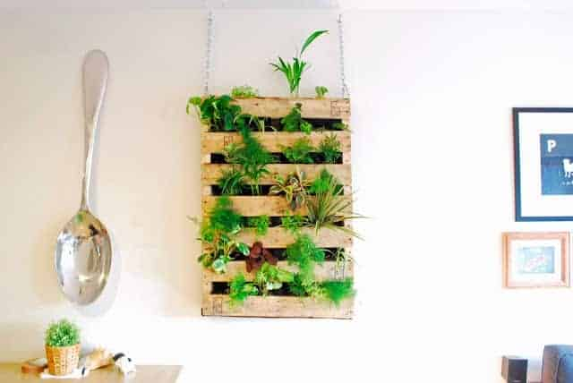 Diy Pallet Living Wall - garden-pallet-projects-ideas, flowers-plants-planters