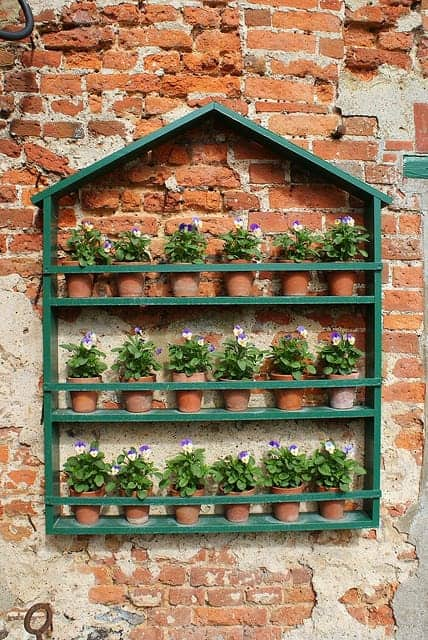 Vertical Garden Wall - flowers-plants-planters
