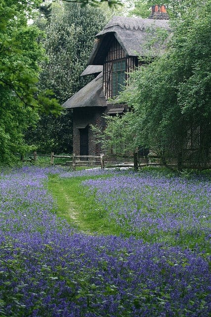 Queen Charlotte's Cottage 15 - Summer & Tree Houses