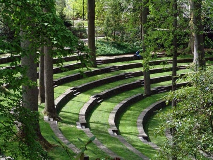 Scott Outdoor Amphitheater Landscape - landscaping