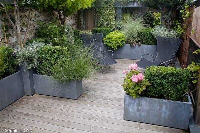 Small Terrace - flowers-plants-planters