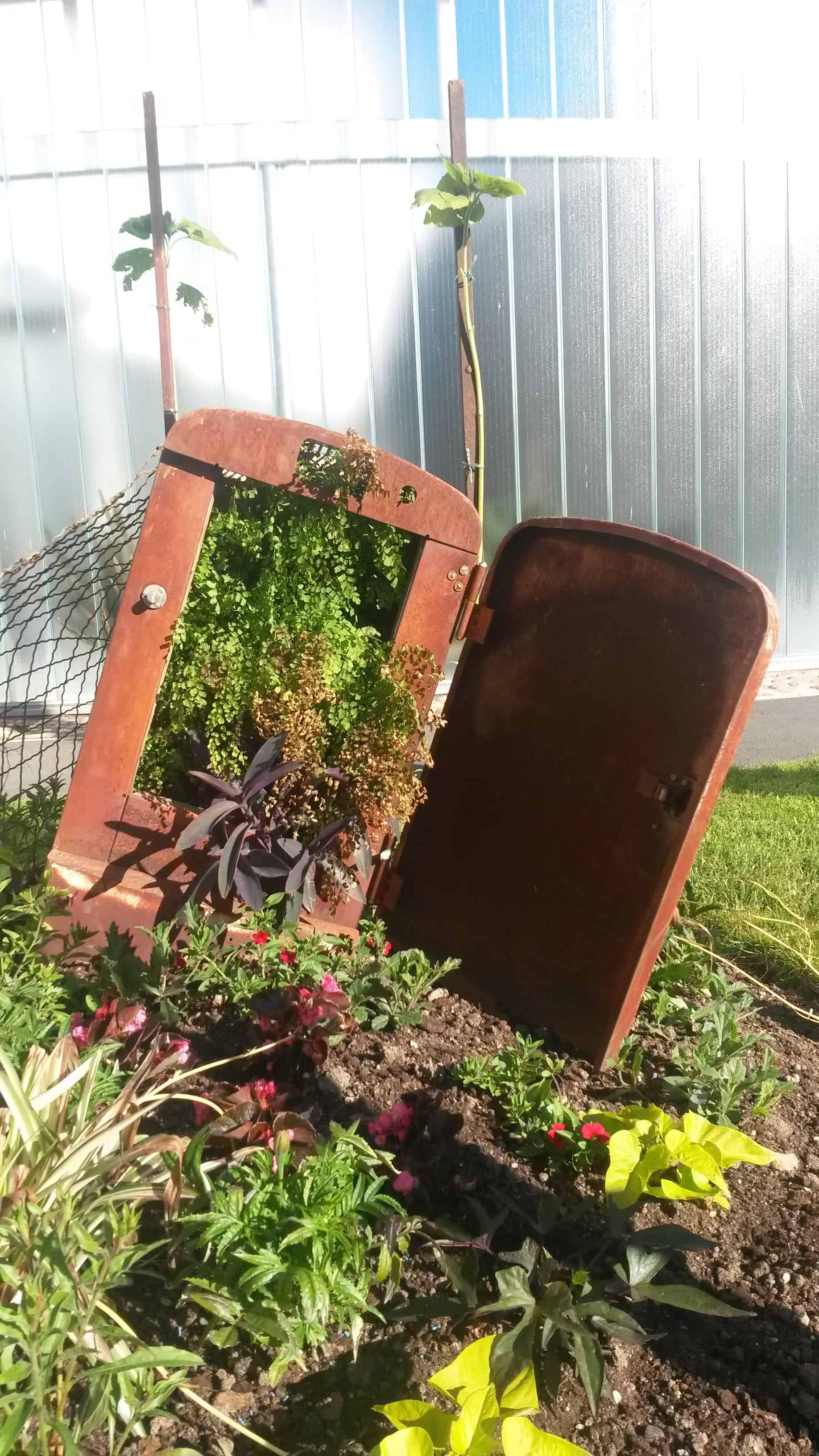 Repurposed Planter - guerrilla-gardening, flowers-plants-planters