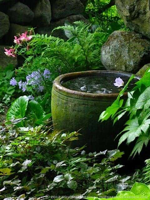 Secret Garden Water Bowl Landscapes