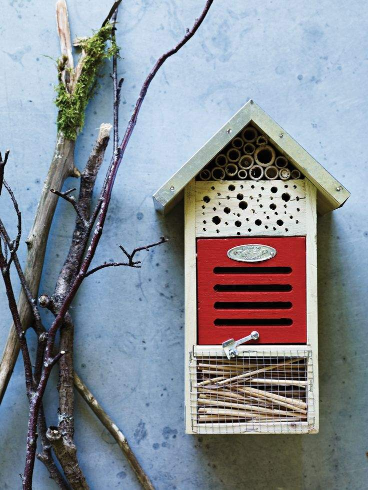 insect hotel 9