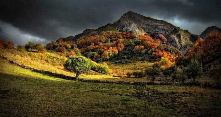 Beautiful Colors of Autumn Landscapes - landscaping