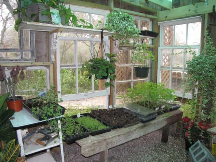 Repurposed Gardenshed 1001 Gardens