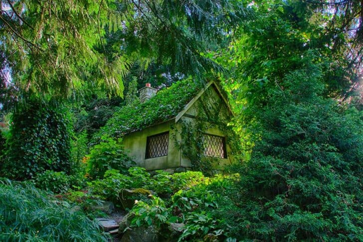 tiny-house-fairytale-nature-landscape-photography-28__880