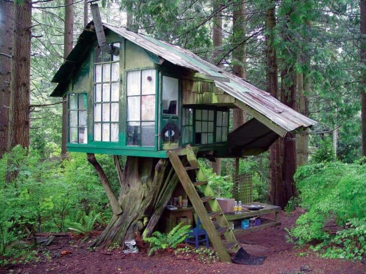 Vintage Beautiful Tree House 17 - Summer & Tree Houses