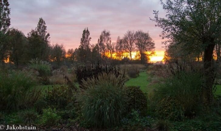 Colors of Fall in a Dutch Flowered Garden Landscape Landscapes