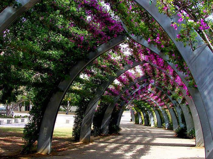 World S Most Magical Streets Shaded 1001 Gardens
