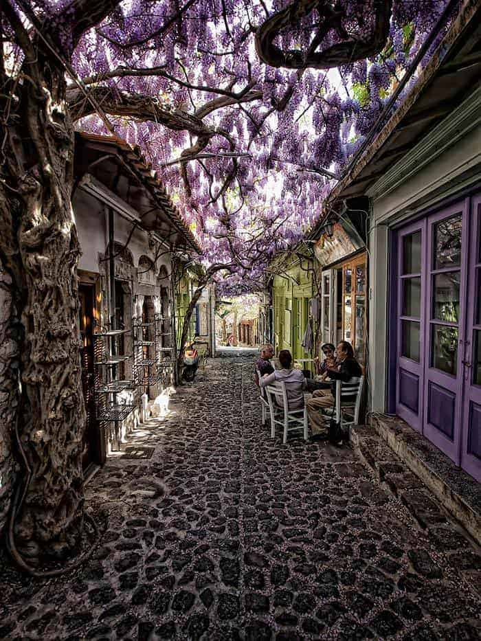 World's Most Magical Streets Shaded Garden Decor