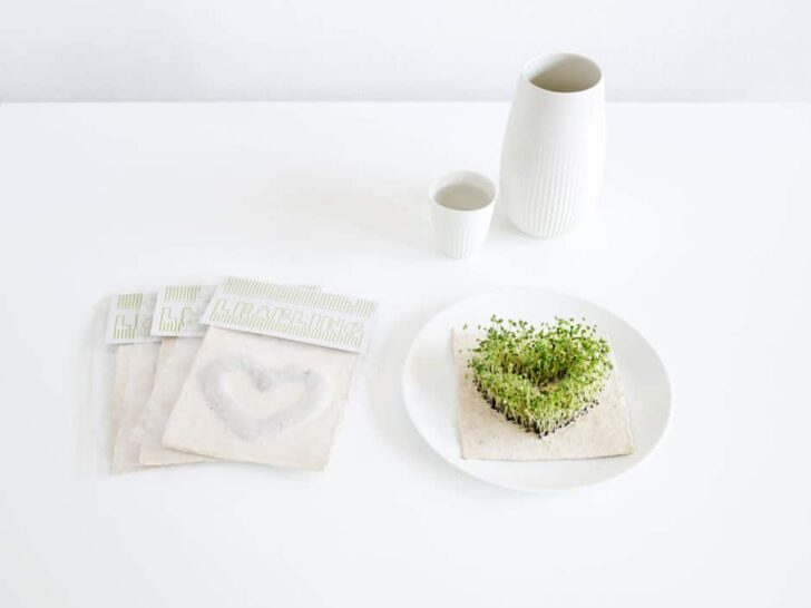 Home-Accessories-Decorations-LEAFLING-–-growing-paper1-940x705