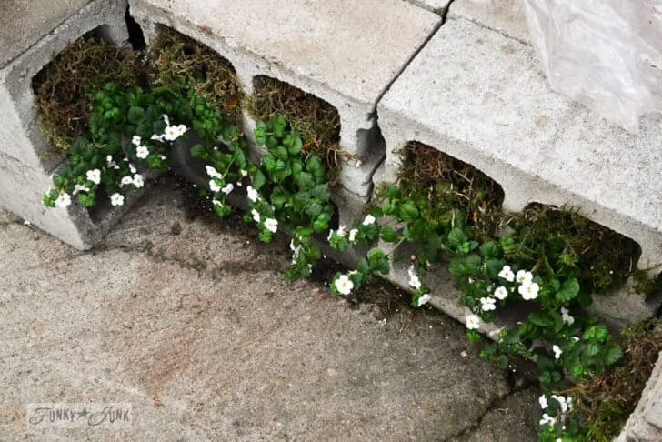 Reused Cinder Block Chair Flowers, Plants & Planters