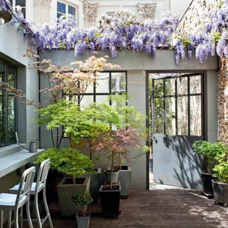 steal-this-look-small-space-patio-gardenista