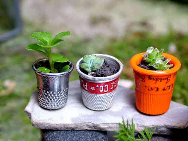 20 Beautiful Tiny Gardens That Fit In The Palm Of Your Hand - flowers-plants-planters