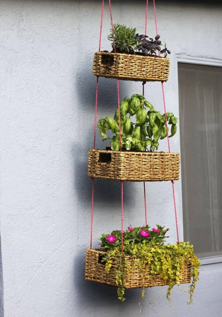 Diy: Upcycled Basket Into Hanging Garden 1 - Flowers & Plants - 1001 Gardens