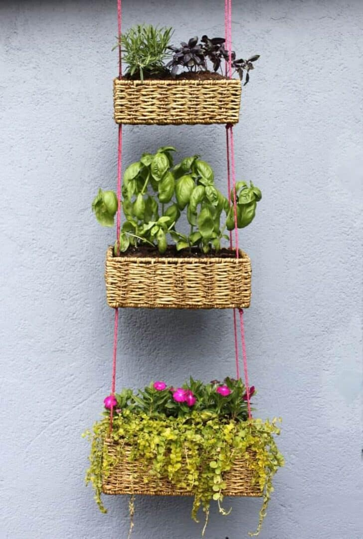 Diy: Upcycled Basket Into Hanging Garden