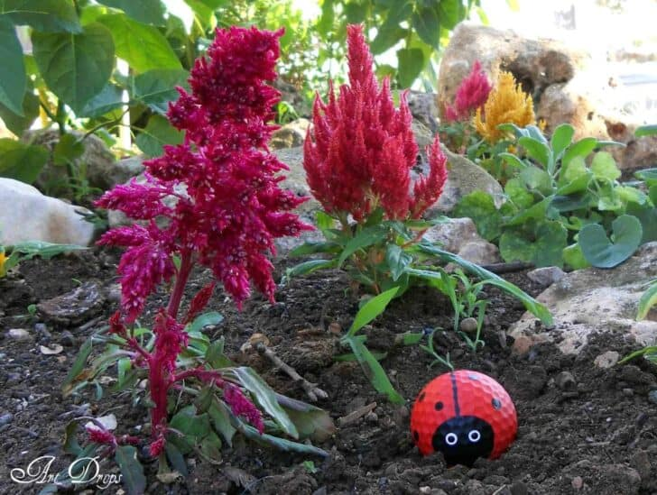 Diy Hy Ladybug Golf Garden Decor 1001 Gardens