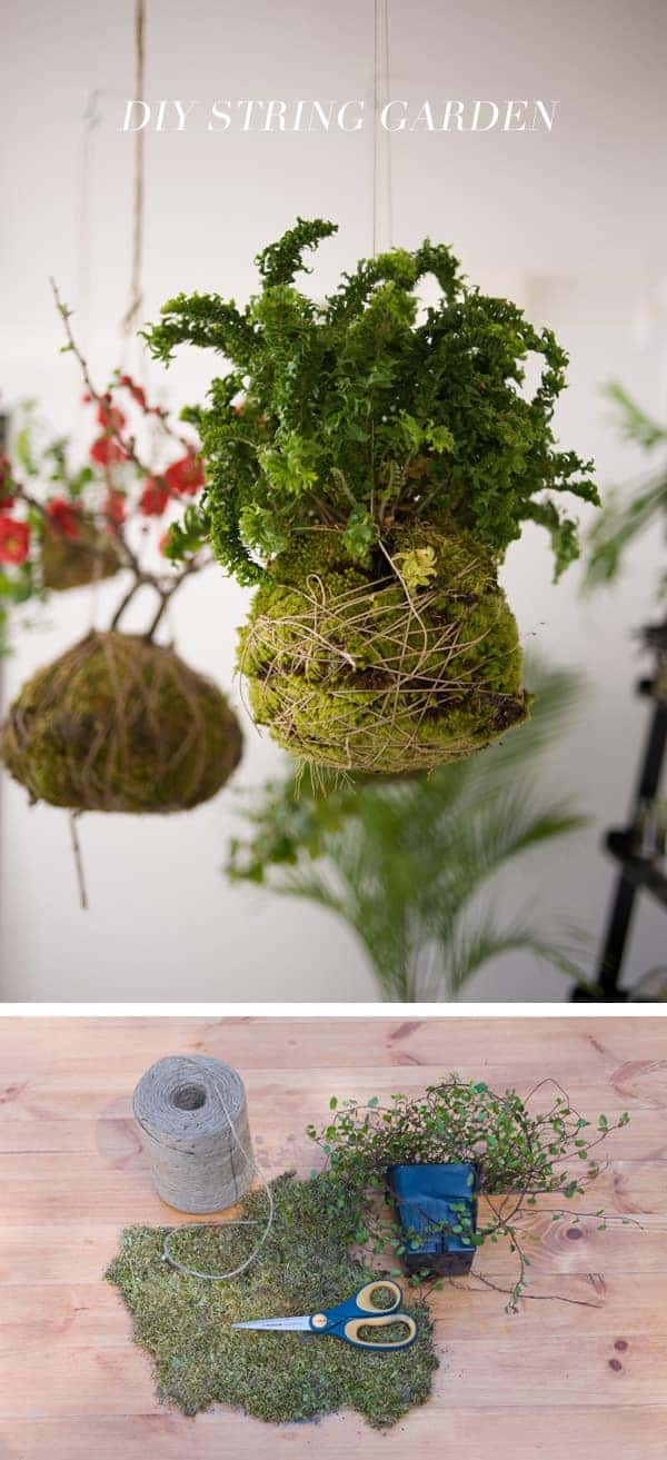 Diy: String Hanging Garden - flowers-plants-planters
