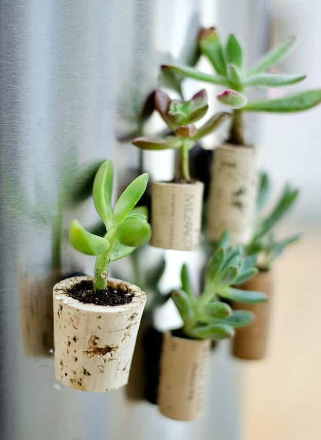 Diy: Tiny Planters From Upcycled Wine Corks Flowers, Plants & Planters