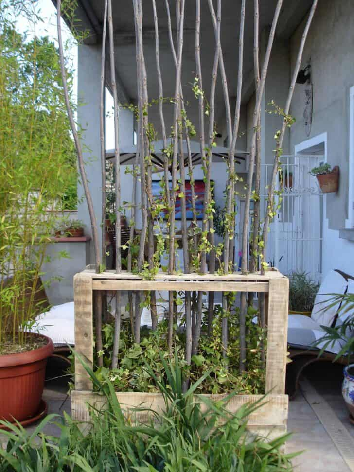 Upcycled Wooden Pallet Vegetal Fence - garden-pallet-projects-ideas, fences