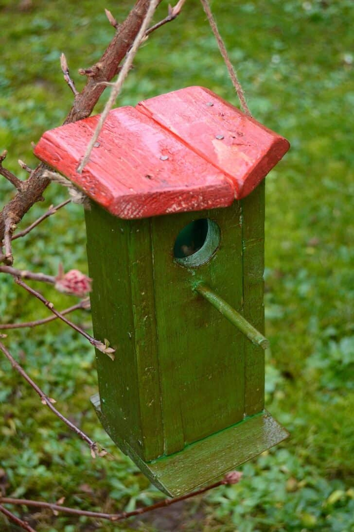 Birdhouse Made From Recycled Wooden Pallet 1 - Bird Feeders & Houses