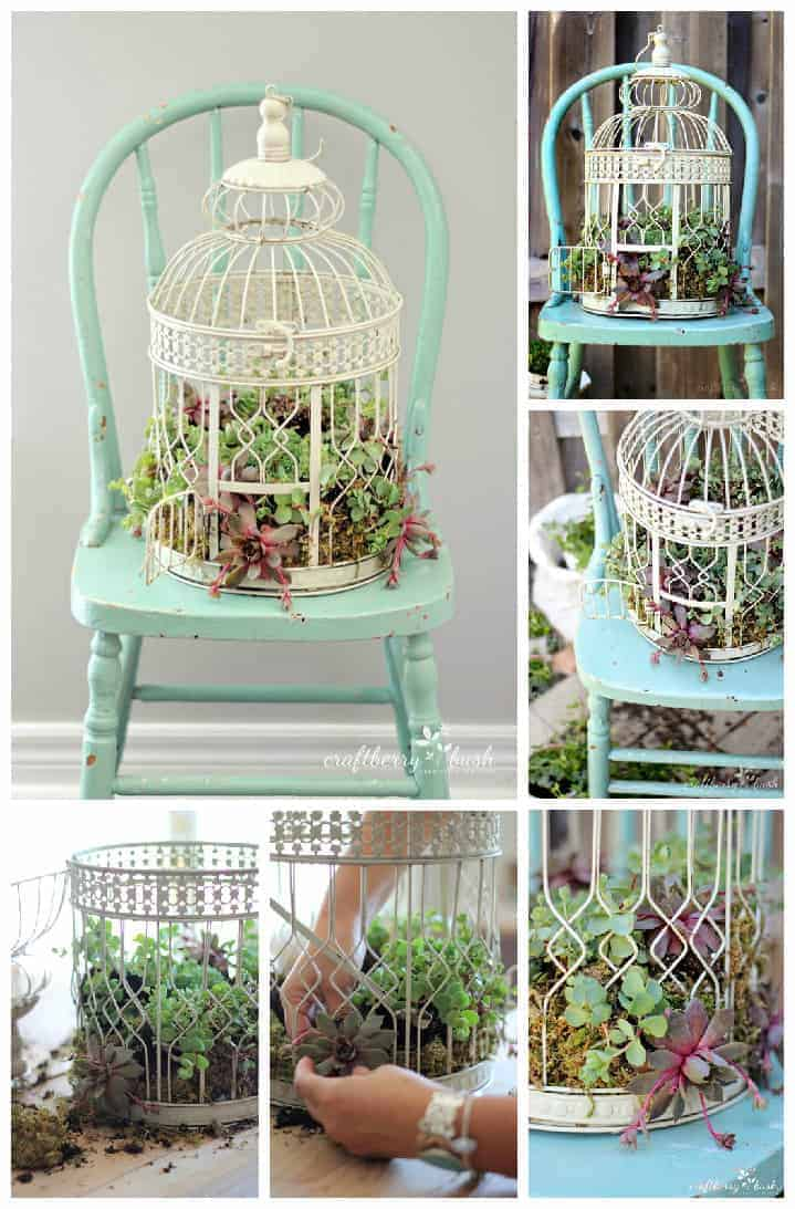 Diy: Transform A Birdcage Into Succulents Planter - flowers-plants-planters