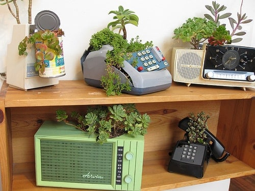 Retro Objects Into Succulent Planters - flowers-plants-planters