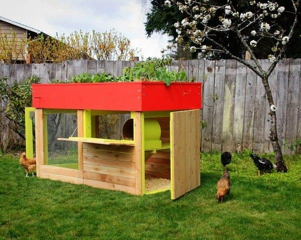 Modern, Aesthetic Chicken Coop - garden-pallet-projects-ideas, flowers-plants-planters, feeders-birdhouses