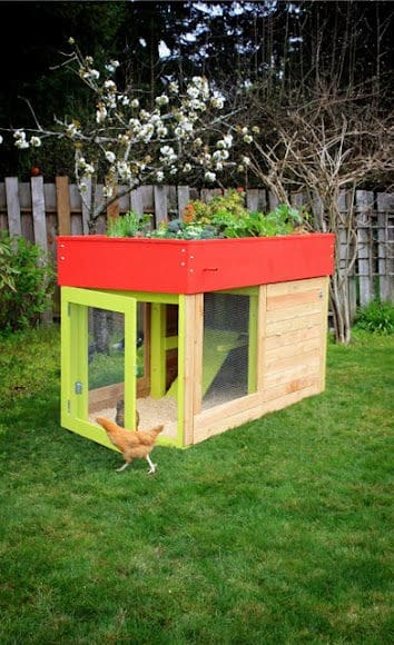 Modern, Aesthetic Chicken Coop   Garden Pallet Projects Ideas, Flowers