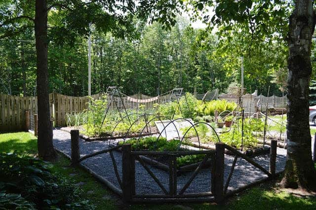 Perfect Example Of A Vegetable Garden Layout 1001 Gardens