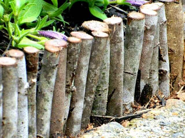 Garden Edging from Repurposed Materials - flowers-plants-planters