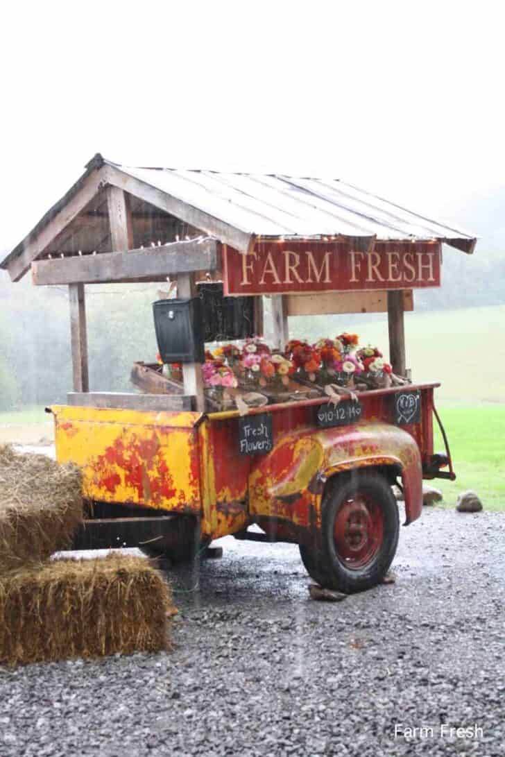 Farmfresh Bouquets: Social Experiment to Sell Flowers on a Trailer by the Side of the Road 4 - Flowers & Plants