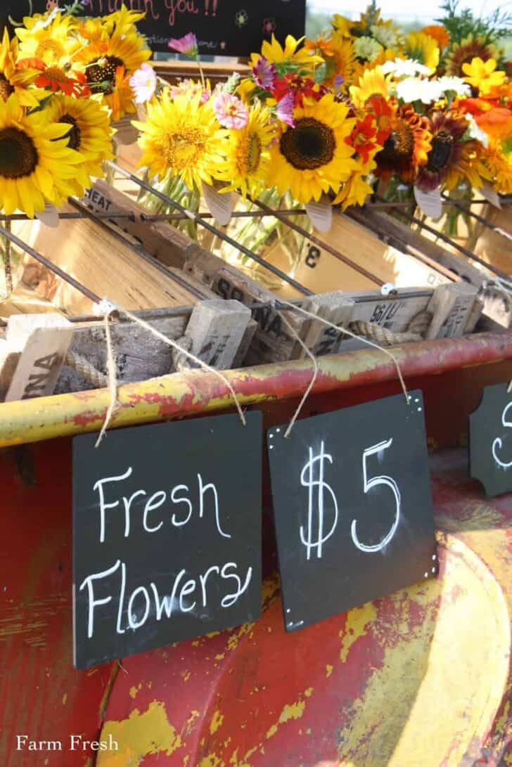 Farmfresh Bouquets: Social Experiment to Sell Flowers on a Trailer by the Side of the Road 2 - Flowers & Plants