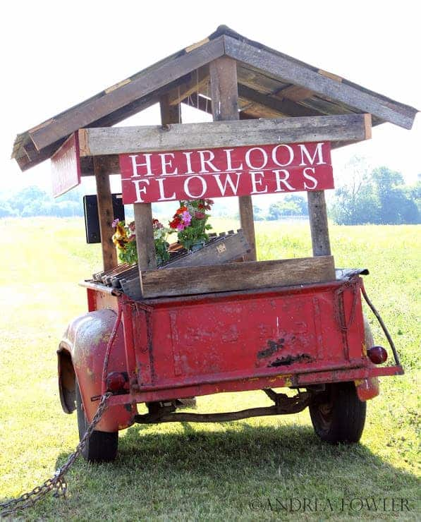 Farmfresh Bouquets: Social Experiment to Sell Flowers on a Trailer by the Side of the Road - flowers-plants-planters