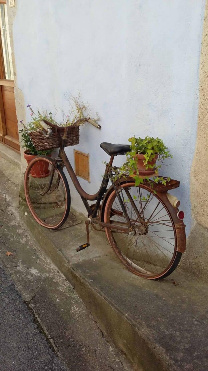 Repurposed Bike Planter Flowers, Plants & Planters Guerrilla & Urban Gardening