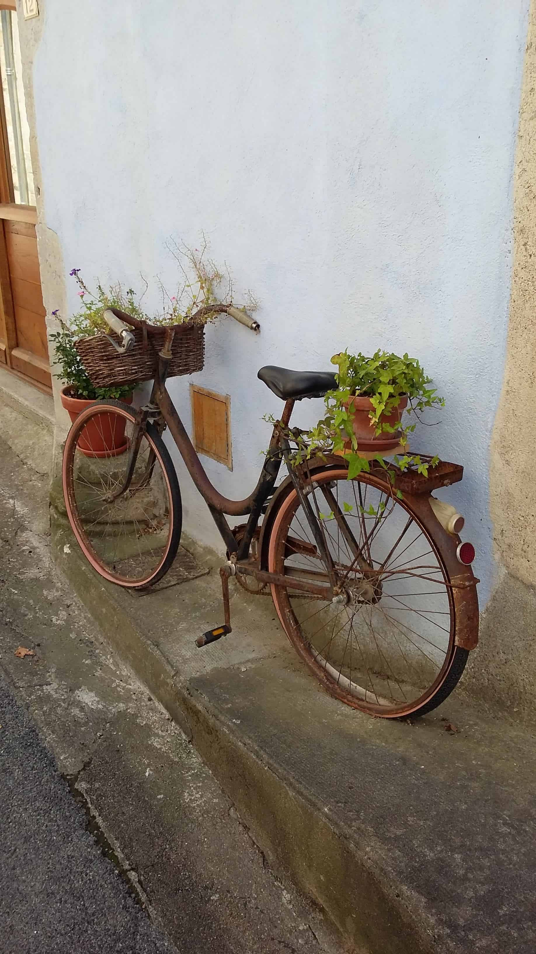 Repurposed Bike Planter - guerrilla-gardening, flowers-plants-planters