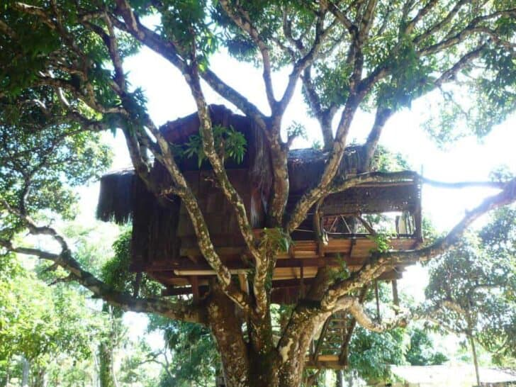 This Art-jungle Eco-lodge in Brasil Is Close to Paradise - sheds-huts-treehouses