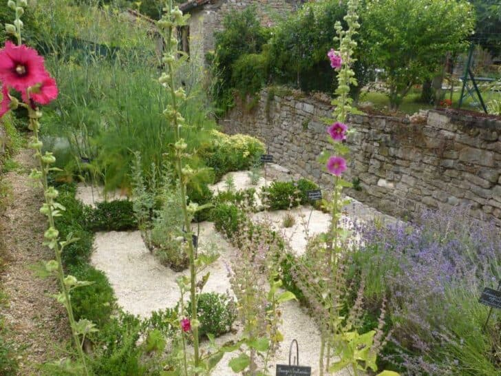 The Medieval Garden of Saint-antonin-noble-val in France Flowers, Plants & Planters