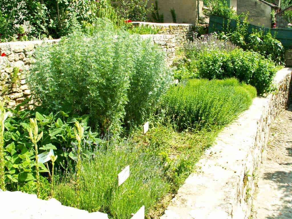The Medieval Garden of Saint-antonin-noble-val in France - flowers-plants-planters