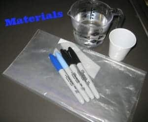 Diy Tutorial: Fog, Water, Rain! Create Your Own Water Cycle in a Plastic Bag - flowers-plants-planters