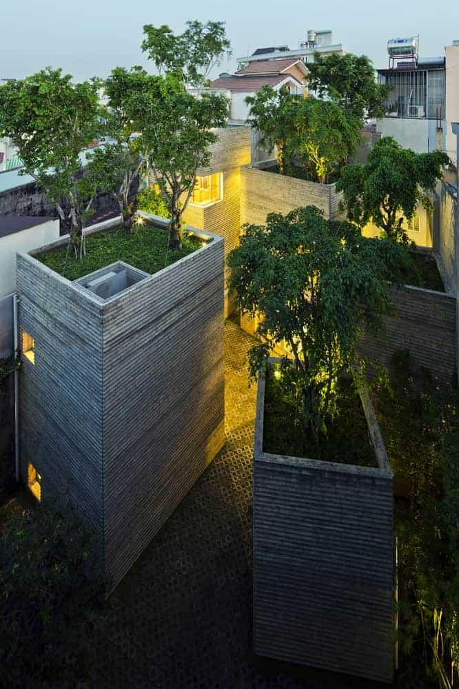 House for Beautiful Trees as an Answer to Lack of Greenery in the Cities Flowers, Plants & Planters