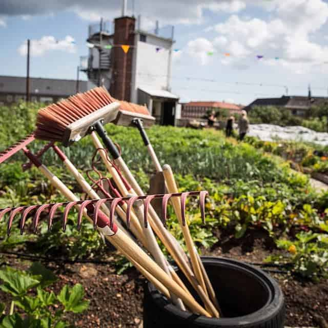 Oestergro, A Urban Farm Landscape Made In Denmark - landscaping