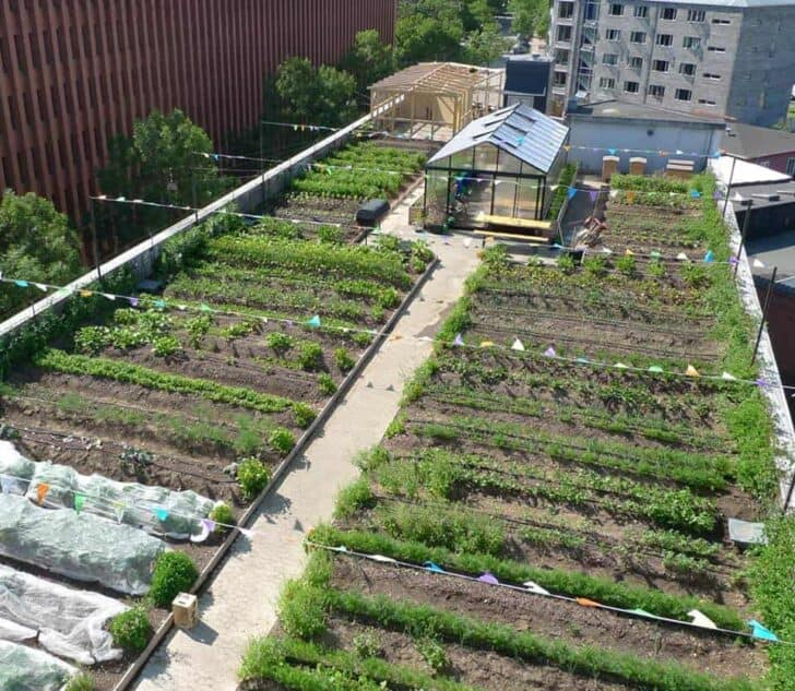 Oestergro, A Urban Farm Landscape Made In Denmark